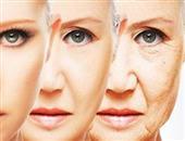 衰老生理表现