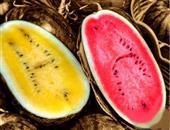 产妇能吃西瓜吗