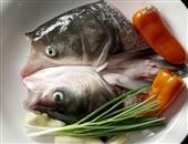 补充蛋白质吃什么食物好?如何饮食