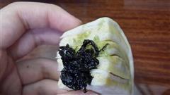 花式玉米馒头