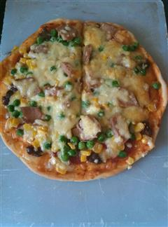 萨拉米金枪鱼披萨
