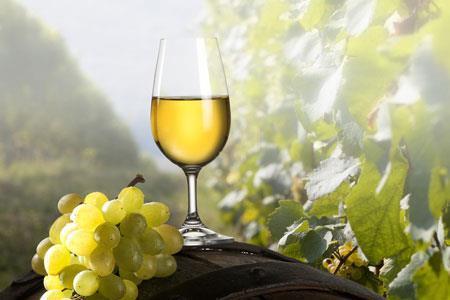 专家建议四类人群不宜喝葡萄酒