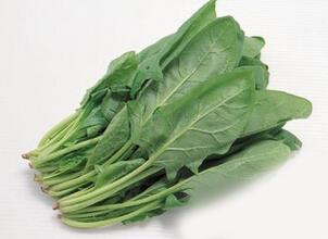 经常喝菠菜汤容易导致缺钙