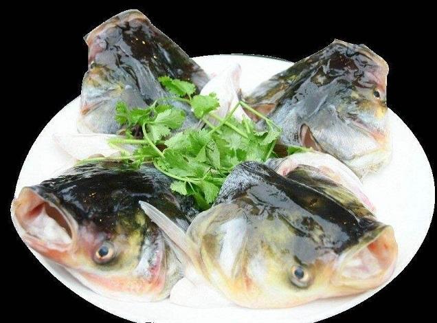 鱼头健康吃 健康美味都得到