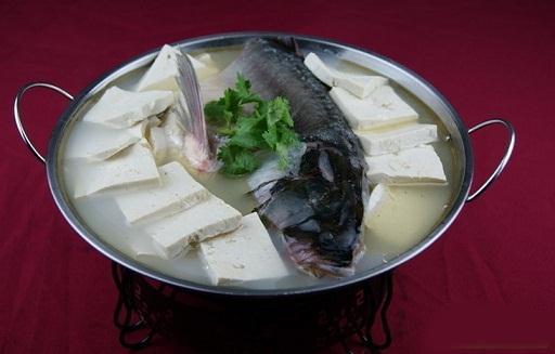 菠菜和豆腐究竟能不能一起吃?