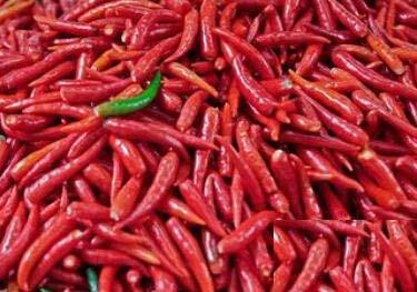 红辣椒的功效与作用_红辣椒的营养分析_适合体质_食用禁忌