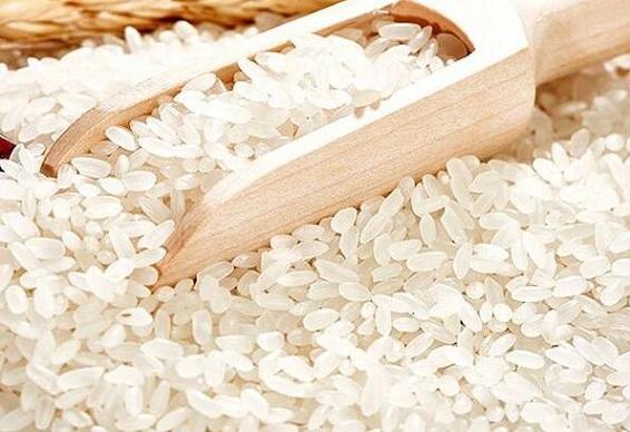 大米的功效与作用_大米的营养价值