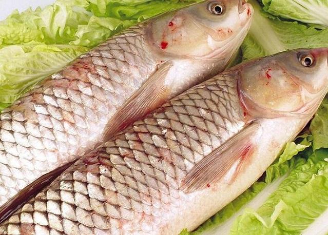 草鱼的营养价值 草鱼适用人群