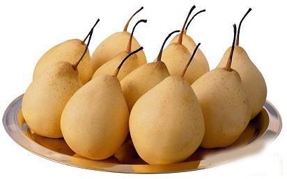 梨的功效与作用_梨的营养价值_梨的适合体质_梨的食用禁忌
