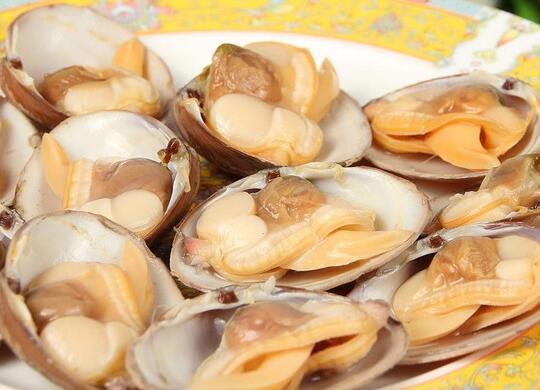 蛤蜊的选购_蛤蜊的存储_蛤蜊的食用方法_蛤蜊的适合体质
