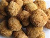 养胃护胃虫草花猴头菇咸肉汤