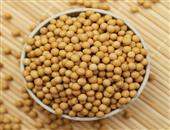 吃豆制品的常见误区