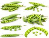 豌豆的营养价值