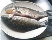 治疗痛经体虚的补血食疗-美味鲫鱼汤