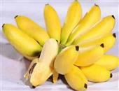 肺炎为何不能吃香蕉 肺炎患者吃什么比较好