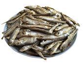 鱿鱼干营养价值有哪些
