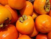 如何用白酒给柿子脱涩 吃柿子的几大禁忌