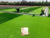 打理草坪(一般割草)