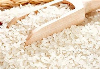 煮饭前要泡泡米营养有美味