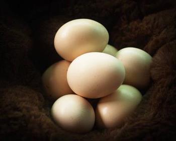 异体蛋白食物有哪些 防皮肤过敏注意事项