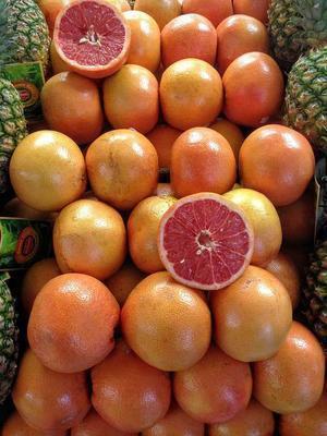 知道柚子酵素功效与作用吗 养生达人为你解答