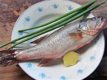 葱油清蒸鲈鱼的做法图解1