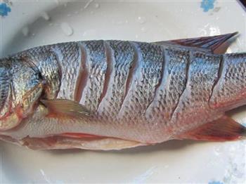 葱油清蒸鲈鱼的做法图解2