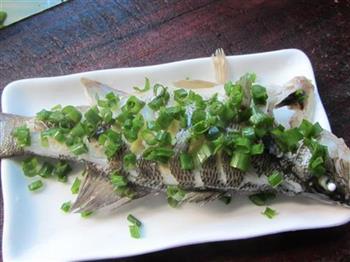 葱油清蒸鲈鱼的做法图解6