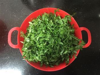 凉拌野扁豆秧的做法图解1