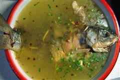 鲜香鲫鱼汤